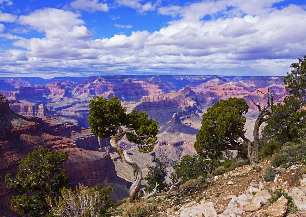 Grand Canyon's Majesty