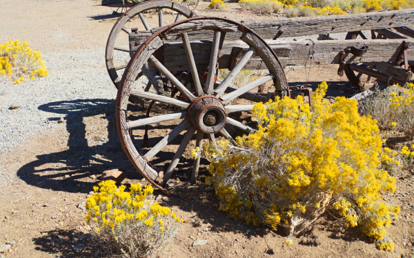 Pioneer Transportation