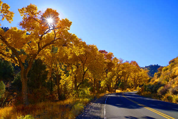 Autumn Drive to Virginia City - WP