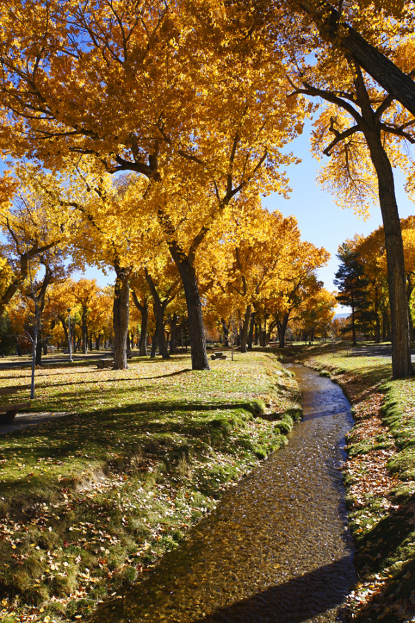 Autumn in Carson City - WP
